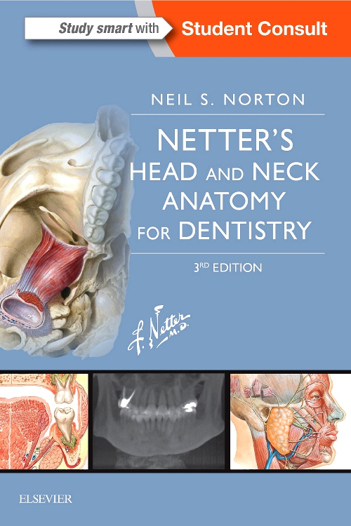 Netters Head And Neck Anatomy For Dentistry