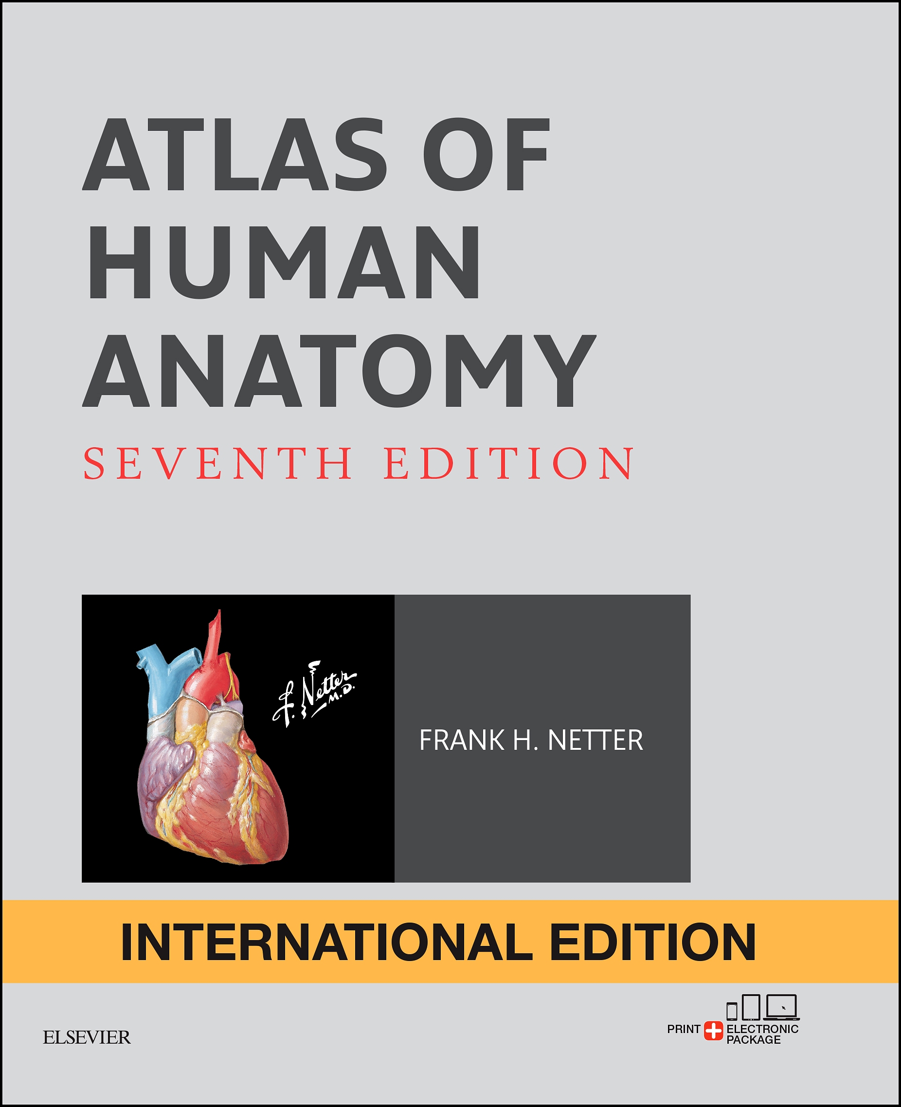 Atlas Of Human Anatomy International Edition Edition 7 By Frank