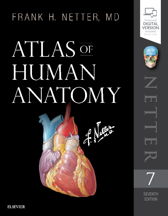 Grants Atlas Of Anatomy Pdf