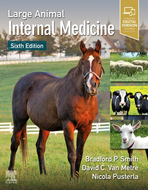 Large Animal Internal Medicine - Edition 6 - Edited by