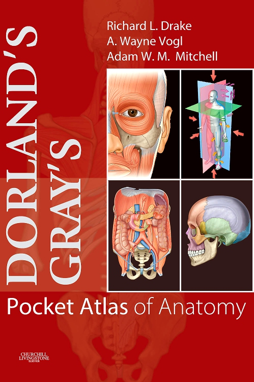 Dorland's/Gray's Pocket Atlas of Anatomy