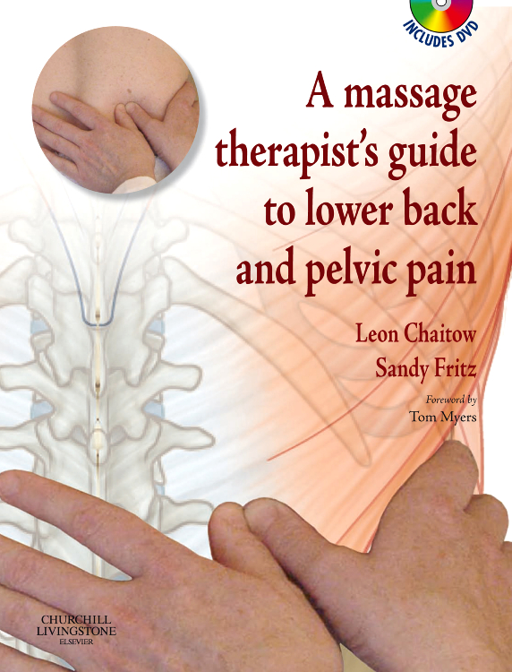A Massage Therapist's Guide to Lower Back & Pelvic Pain