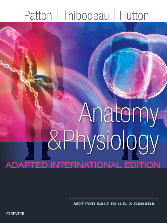 Anatomy and Physiology Adapted International Edition