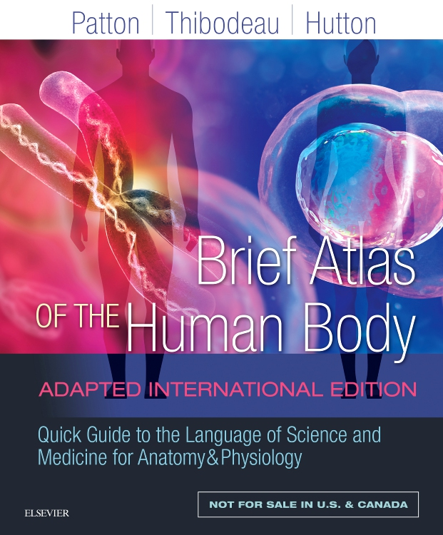 Brief Atlas of the Human Body Adapted International Edition