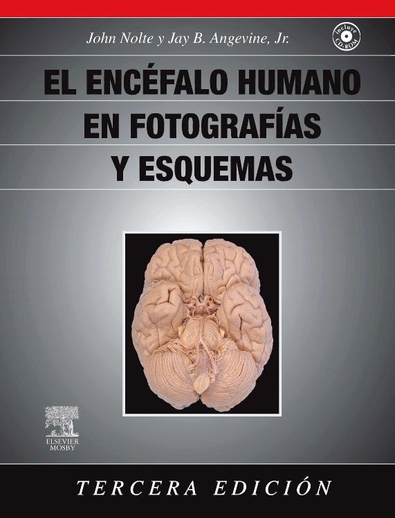 El encéfalo humano en fotografías y esquemas + CD-ROM - Edición 3 ...