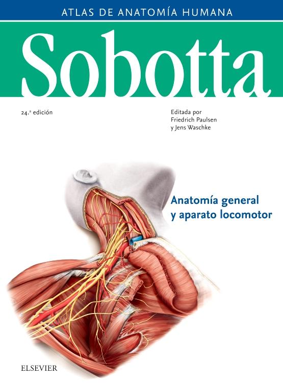 Sobotta. Atlas de anatomía humana vol 1 - Edición 24 - By Friedrich ...