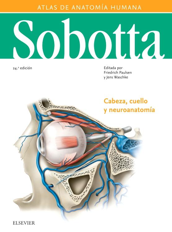 Sobotta. Atlas de anatomía humana vol 3 - Edición 24 - By Friedrich ...